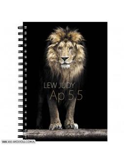 Lew Judy